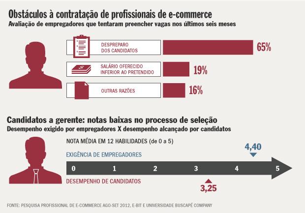 Pesquisa Profissional de E-commerce 2012