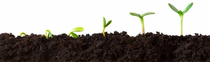 O que é growth hacking? O que isso pode contribuir para o desenvolvimento de negócios?